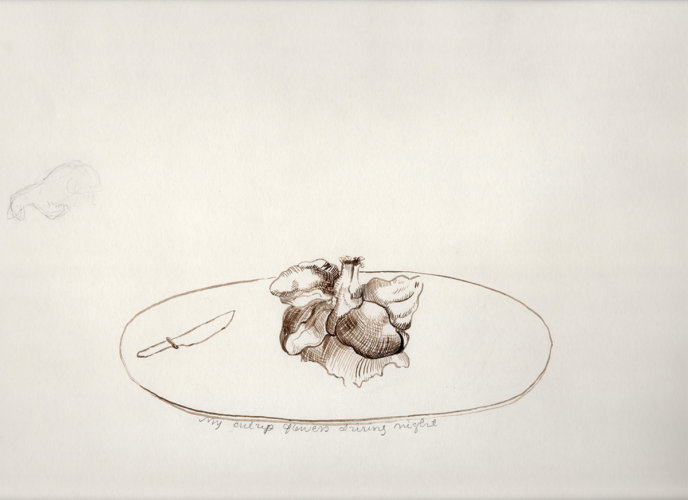 Heart Flower, ink drawing, 2006