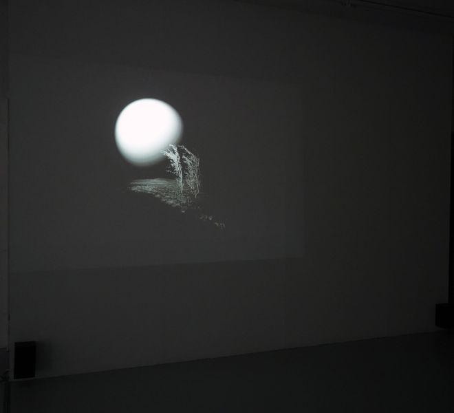 Film screening of Fjellvind by Mari Kretz - Mari Kretz