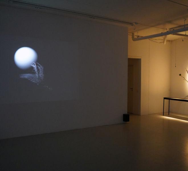 Fjellvind - installation view