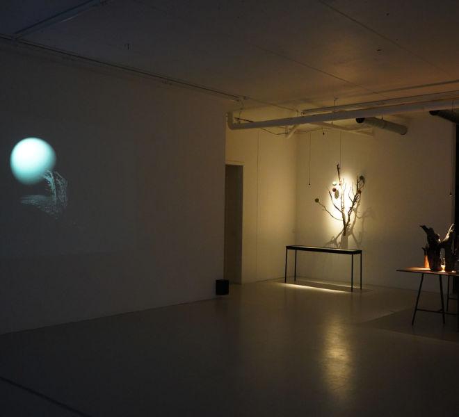 Fjellvind, Universe and Observations - Mari Kretz